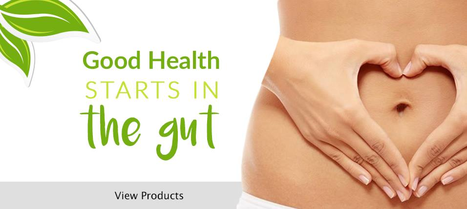 Gut and Digestion Health